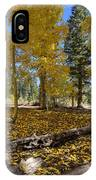 Fall Splendor IPhone Case