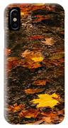 Fall Stream Bed IPhone Case
