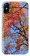 Fall Trees 2 Of Wnc IPhone Case