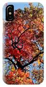Fall Trees Of Wnc IPhone Case