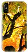 Fall Trees On A Country Road 3 IPhone Case