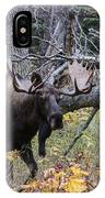Fall Warrior IPhone Case
