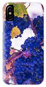 Fall Wine Grapes IPhone Case