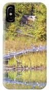 Fallen Timber  IPhone Case
