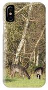 Fallow Deer IPhone Case