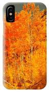 Falls Trees IPhone Case