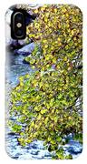 Faltering Aspen At Vail  IPhone Case