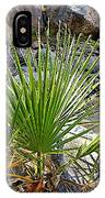 Fan Palm Leaf Over Andreas Creek In Indian Canyons-ca IPhone Case