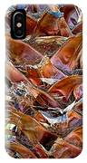 Fan Palm Trunk In Andreas Canyon In Indian Canyons-ca IPhone Case