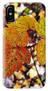 Fancy Fall Leaves IPhone Case