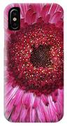 Fancy Pink Daisy IPhone Case