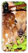 Fawn In The Forest - Inspirational - Religious IPhone Case