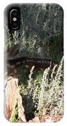 Fawn Front Yard Divide Co IPhone Case