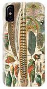 Feather Plumes-a IPhone Case