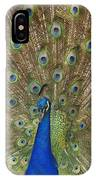 Feather Show IPhone Case