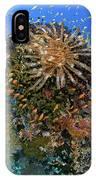 Feather Star (crinoidea IPhone Case