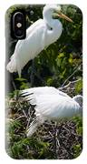 Feathers In A Twist IPhone Case