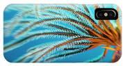 Featherstar IPhone Case