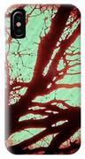 Featured Sun Peaceful Zentree Rest IPhone Case