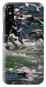Feeding Humpback Whale IPhone Case