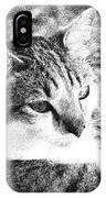 Feline Pose IPhone Case