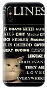 Felines   - Poster  IPhone Case