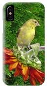 Female American Goldfinch IPhone Case