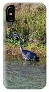 Female Blue Heron  IPhone Case