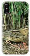 Female Bobolink At Nest IPhone Case