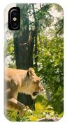 Female Lion On The Move IPhone Case