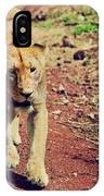 Female Lion Walking. Ngorongoro In Tanzania IPhone Case