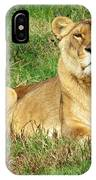 Female Lioness Lying On The Grass In The Afternoon Sun IPhone Case