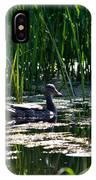 Female Mallard Duck Swimming IPhone Case