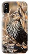 Female Red-winged Blackbird IPhone Case