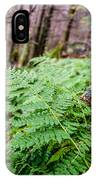 Fern In Forest IPhone Case