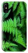 Ferns Along The River IPhone Case