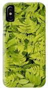1m2436-ferns At The Base Of Mt. Robson  IPhone Case