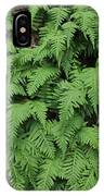 D3b6333-ferns In Sonoma 2  IPhone Case