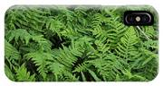 D3b6327-ferns In Sonoma IPhone Case