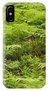 Ferns In Summer IPhone Case