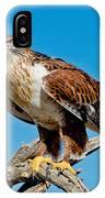 Ferruginous Hawk About To Take IPhone Case