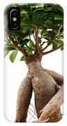 Ficus Ginseng IPhone Case