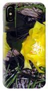 Field Cactus IPhone Case