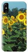 Field Of Smiley Faces IPhone Case
