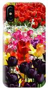 Field Of Tulips Ll IPhone Case