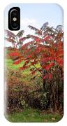 Field With Sumac In Autumn IPhone Case