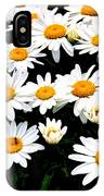 Fields Of Daisies IPhone Case