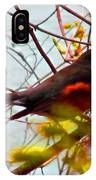 Finch In Springtime On A Very Windy Day IPhone Case