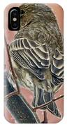 Finch On A Snowy Day IPhone Case