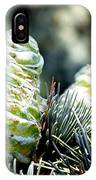 Fir Cone IPhone Case